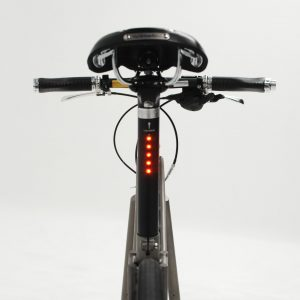 lightskin LED seatpost